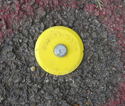 modern survey Mark